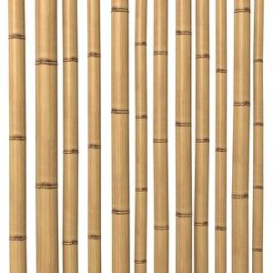 3d model bamboo stem dry