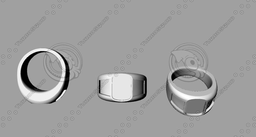 inset ring 3d 3ds