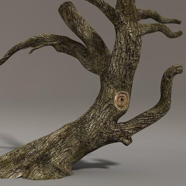 3d timber branches model