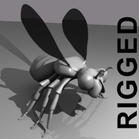 rigged flying insect
