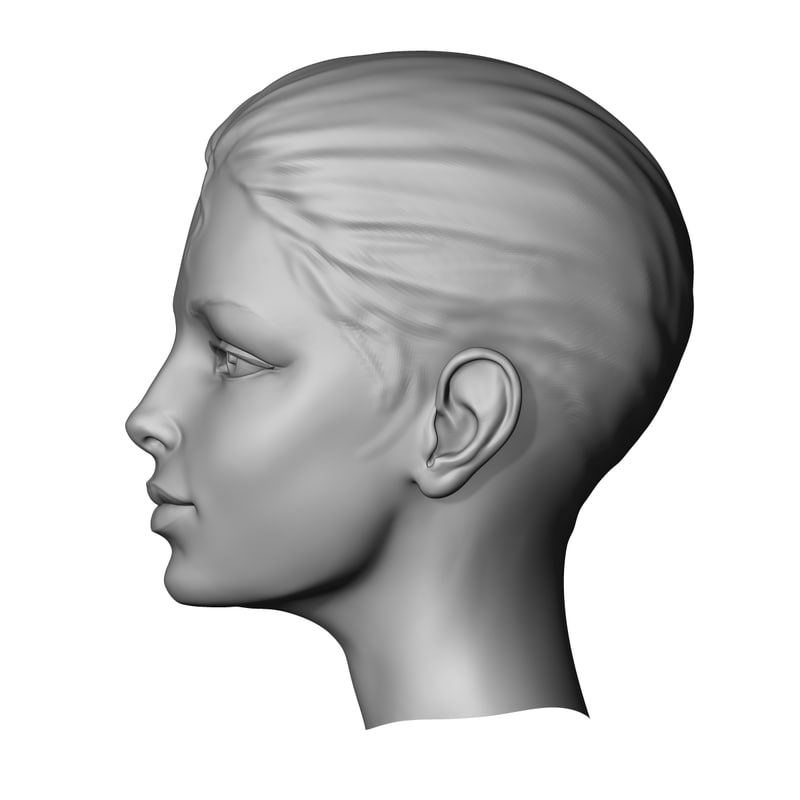 free zbrush woman head 3d model