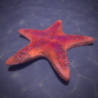 starfish blender 3ds