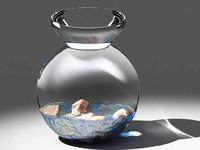 Stones in glass vase