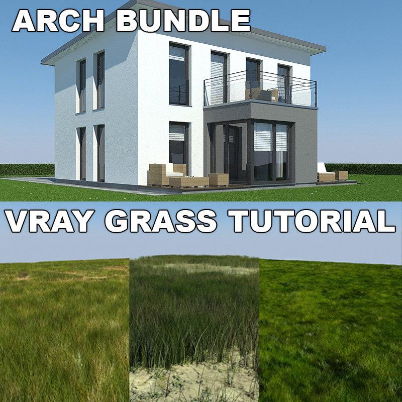 house grass 3d model