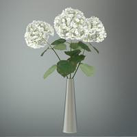 3d flowers leaf