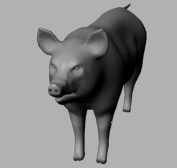 3d pig vertices