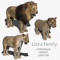 lions family fur 3d obj