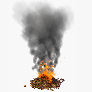 smoke leaves pile 3d model