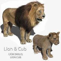 3d lion cub fur model