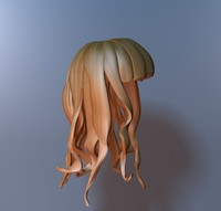 3d model cartoon girl hair