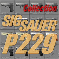 Sig Sauer P229 series collection