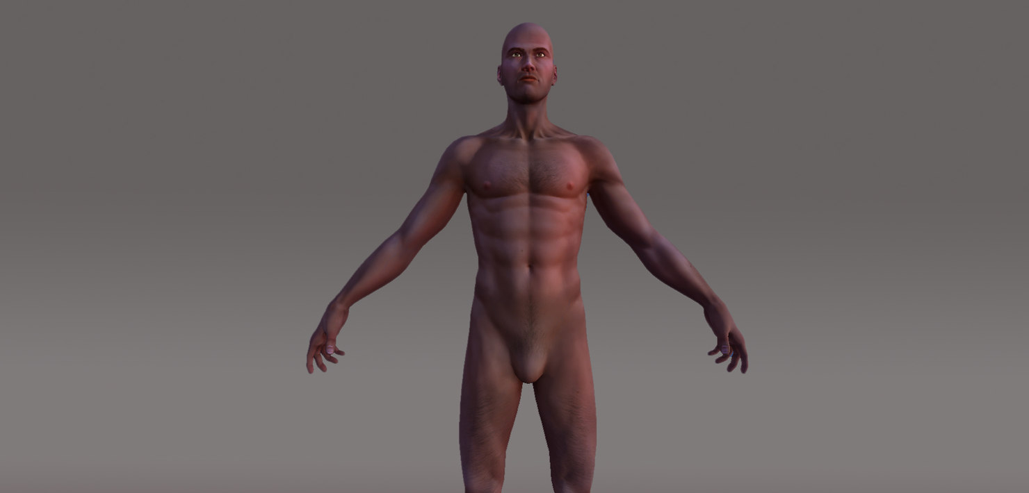 3d human male character rigged