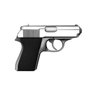 fbx gun walther ppk