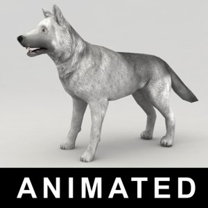 rigged wolf 3d obj
