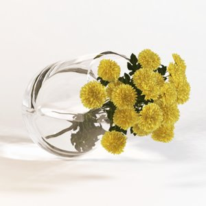 fbx sprig chrysanthemums vase