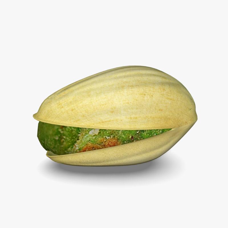 3d model pistachio nut