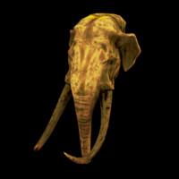 3d model gold elephant