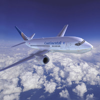 3d model boeing 737 continental airlines