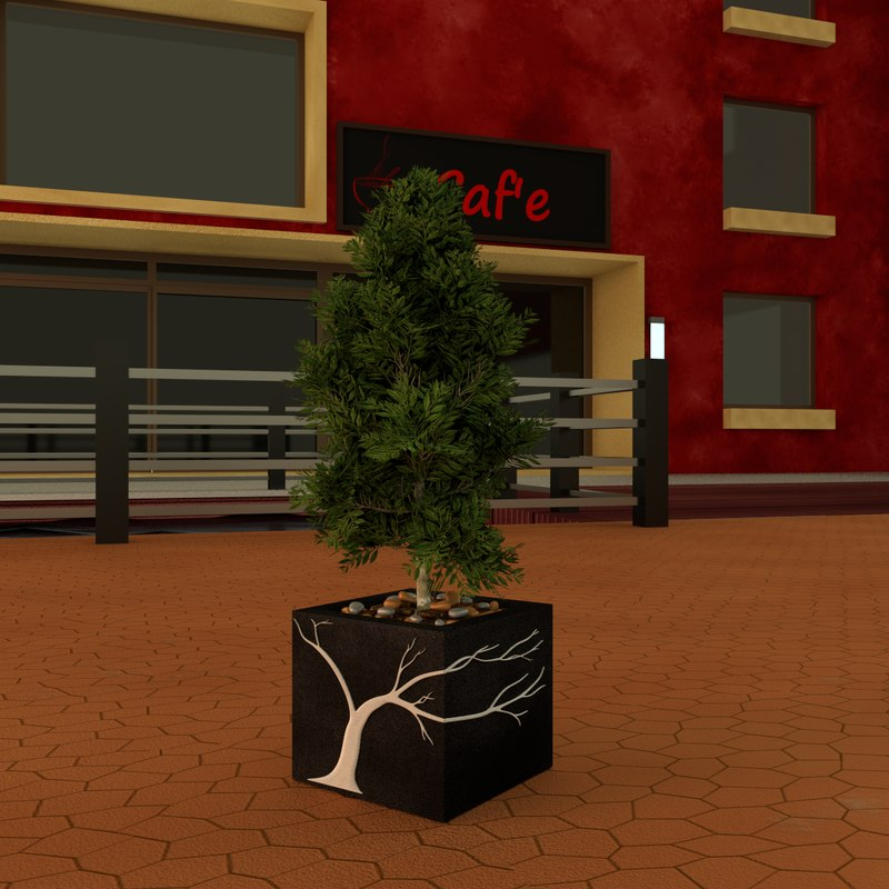 potted laurus nobilis plants 3d model