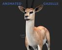 Gazelle 3D models
