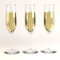 champagne glass 3d 3ds