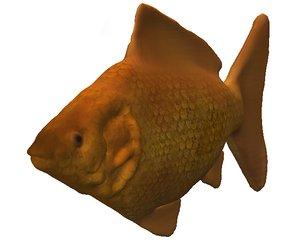 3d model fish goldfish
