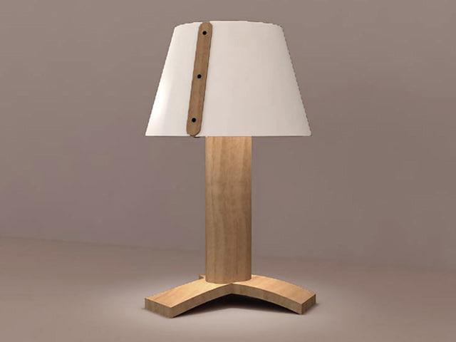 3d light s2498 model