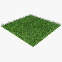 grass 03 b 3d model