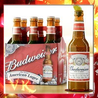 Budweiser Beer Bottle - Six Pack