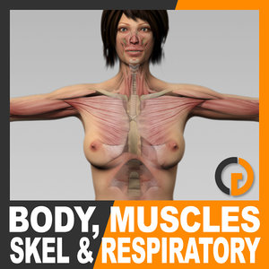 maya human female body muscular