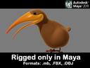 Kiwi Bird 3D models