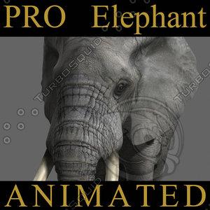 elephant pros 3d