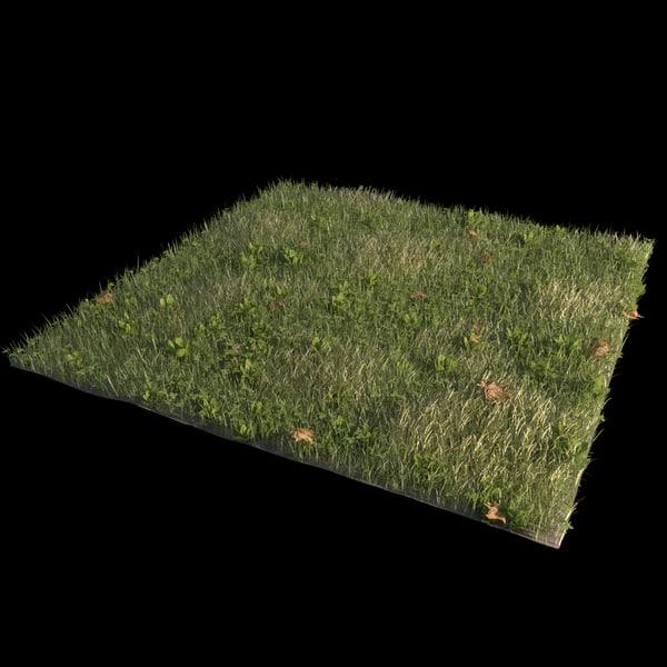 field 2 3d model