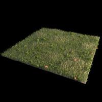 Front Yard (Terrain 2)