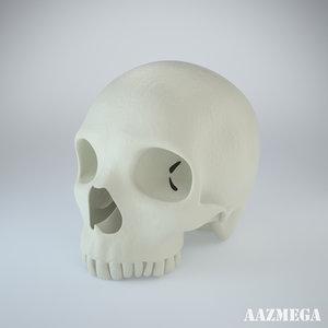 photorealistic human skull max