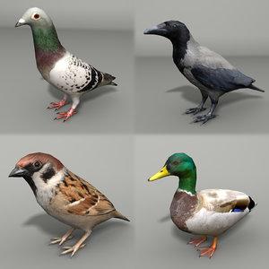 city birds 3ds