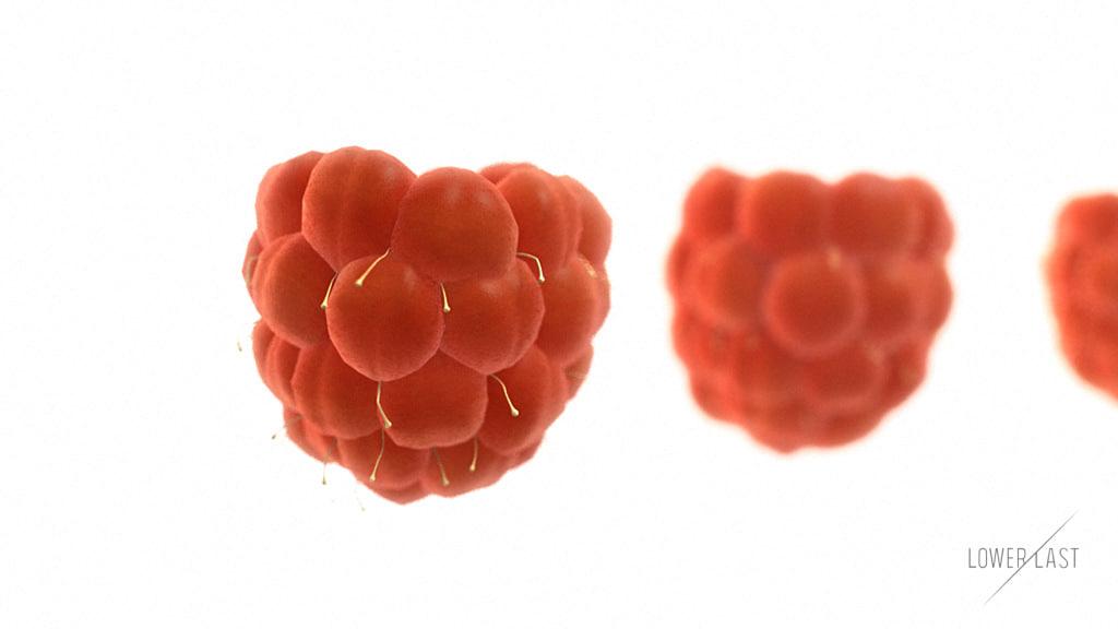 3d model raspberries berries