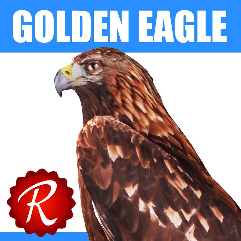 3d model of golden eagle