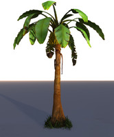 3ds max banana tree palm