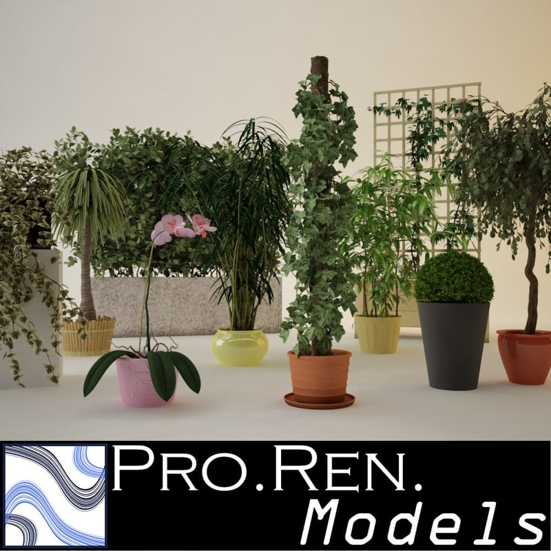 3d realistic pot plants model