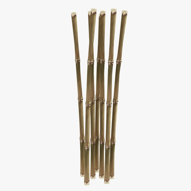 Bamboo Bar 3D Model - 3D CAD Browser