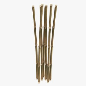 3d model dried bamboo cane