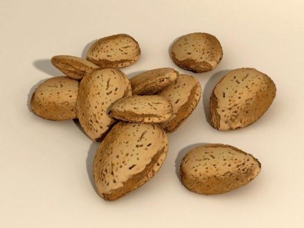 3d model shell almond