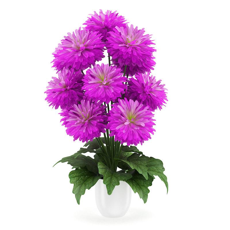 3d model flower pink pot