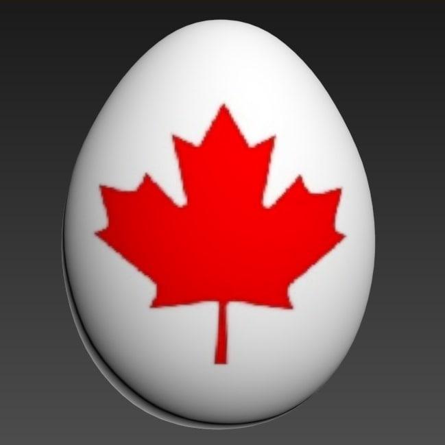3d model of egg