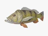 cock bass fish 3d max