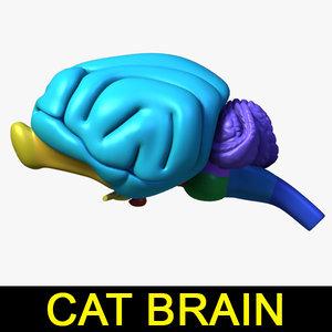 max cat brain