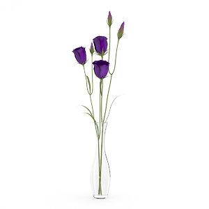 model of flower eustoma vase