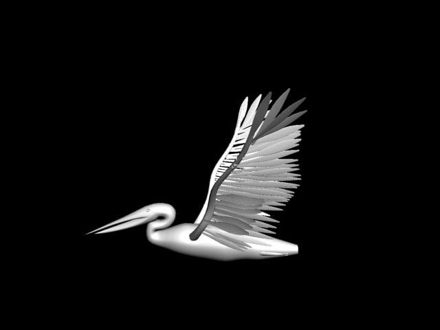 pelican max