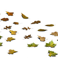 3ds max leaf ground